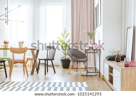 Gray Armchair In Bright Dining Room Interior With Ficus Near A Window Pink Drapes