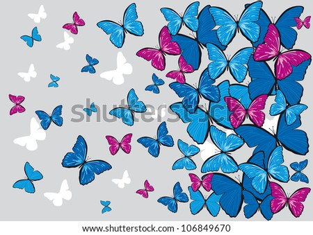 gray background with colorful butterflies for design