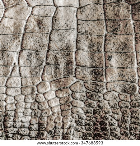 gray-brown natural snake skin pattern. Useful  as background