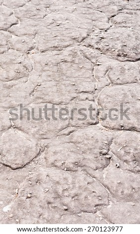 Gray limestone path with moss in nature as background texture