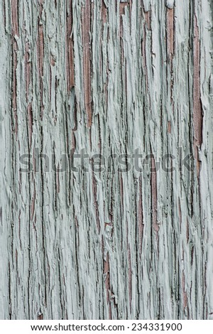 Gray painted peeling wood for use as a texture - stock photo