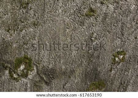 Gray wall grunge texture background