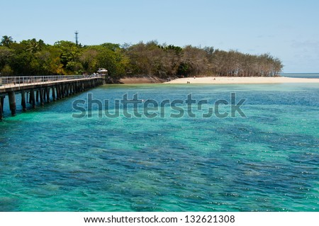 Great Barrier Reef, Australia. Snorkelers and other visitors tour the reef from Green Island, near Cairns. - stock photo