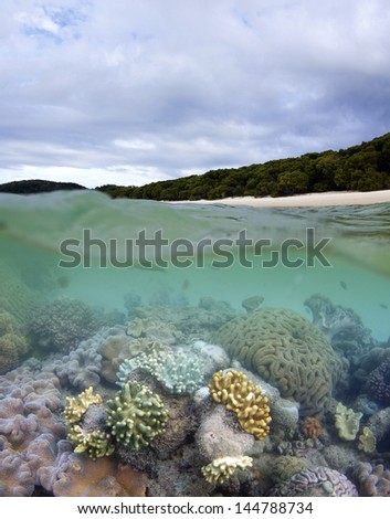 Great Barrier Reef in Whitsundays - stock photo