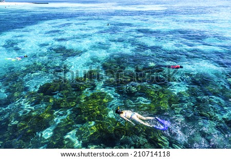 Great Barrier Reef, Queensland - stock photo