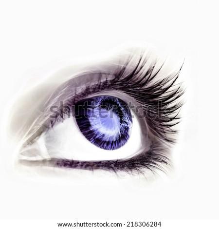 Great big eye. Macro. - stock photo