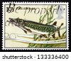 GREAT BRITAIN - CIRCA 1983: a stamp printed in the Great Britain shows Pike, pickerel, Esox Lucius, fish, circa 1983 - stock photo