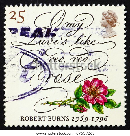 GREAT BRITAIN - CIRCA 1996: a stamp printed in the Great Britain shows Rose and lines from poem by Robert Burns, circa 1996 - stock photo