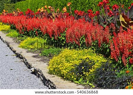 Great Garden Border Design
