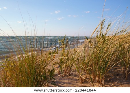 Great Lakes Paradise. Dune grass blows in the summer breeze with the Lake Michigan horizon as the backdrop.  - stock photo