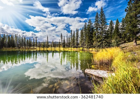 Great morning sun is reflected in the smooth water of the lake. On the shores of the lake grow coniferous forests. Jasper National Park in the Rocky Mountains  - stock photo