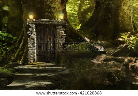 Great mysterious forest on a bright sunny day - stock photo