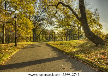 Great North woods New York City Manhattan in Autumn