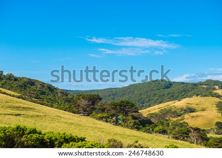 Great Otway National Park along the Great Ocean Road, Victoria, Australia - stock photo