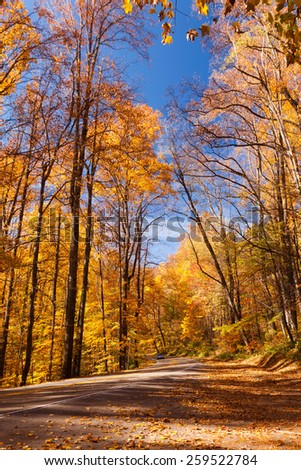 Great Smoky Mountain National Park - stock photo