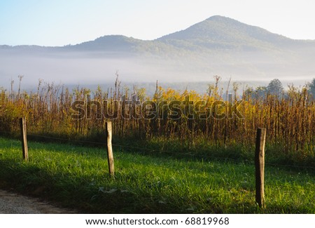 Great Smoky Mountains in morning fog - stock photo