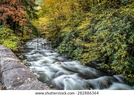 Great Smoky Mountains National Park - Stream near Cades Cove  - Gatlinburg Pigeon Forge TN