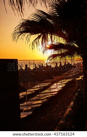 Great sunset on seaside with palms and tents