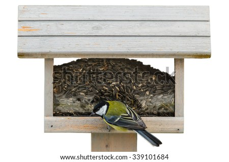 Great tit on birdfeeder isolated on white background - stock photo