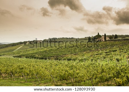 Great tuscany fields in afternoon, Italy. - stock photo
