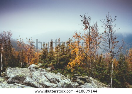 Great view of the valley which glow by sunlight. Dramatic scene and picturesque picture. Location place Carpathian, Ukraine, Europe. Beauty world. Soft filter, vintage style. Instagram toning effect. - stock photo