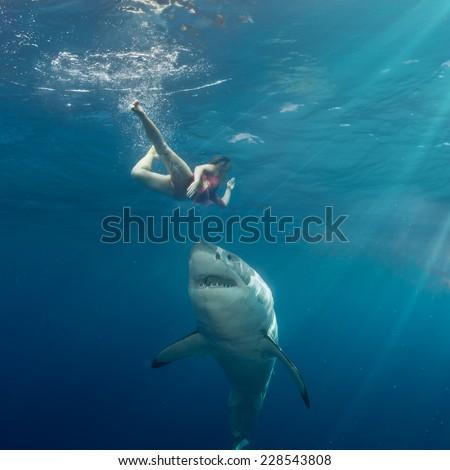Great White Shark attack swimmer - stock photo