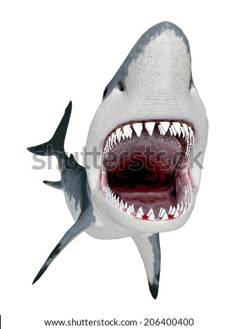 Great White Shark isolated on white background Computer generated 3D illustration - stock photo