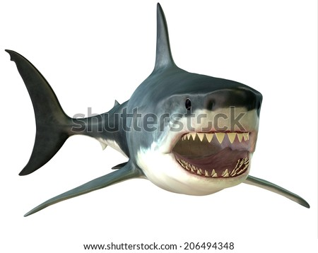 Great White Shark Mouth - The Great White Shark is an apex-predator and has several sets of teeth which replace themselves continuously. - stock photo