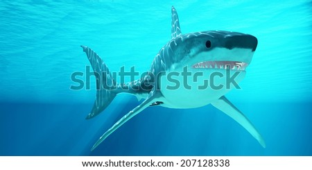 Great White Shark with Sunrays - The Great White Shark can live for more than 70 years and reach a length of 8 meters or 26 feet. - stock photo