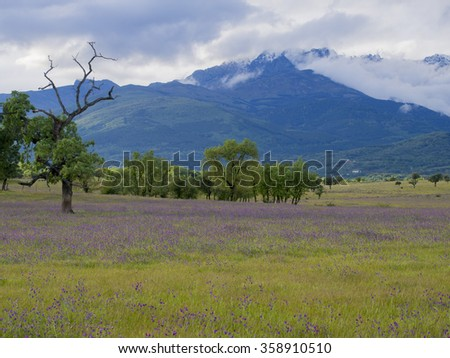 Gredo`s mountain landscape - stock photo
