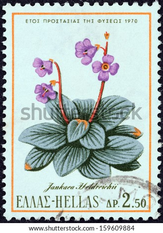 """GREECE - CIRCA 1970: A stamp printed in Greece from the """"Nature Conservation Year"""" issue shows a Jankaea heldreichii plant, circa 1970.  - stock photo"""