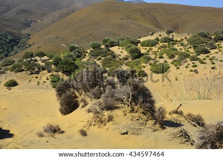 Greece, landscape and vegetation in Little Sahara aka Pachies Ammoudies on Lemnos island