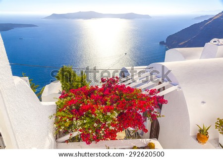 Greece Santorini colorful flowers view - stock photo