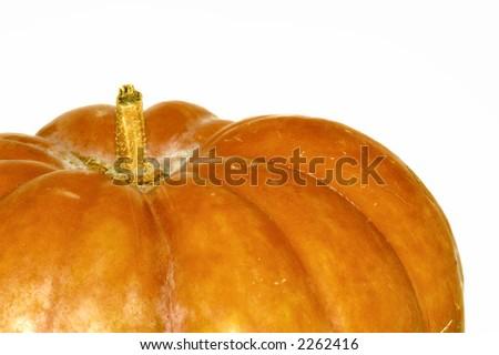 Greek  pumpkin (macro shot you can see the  pumpkin's texture skin) - stock photo