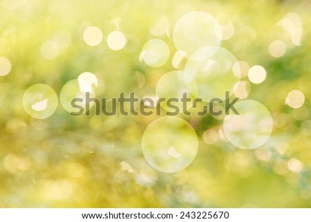 Green abstract background with real bokeh - defocused natural lights - stock photo