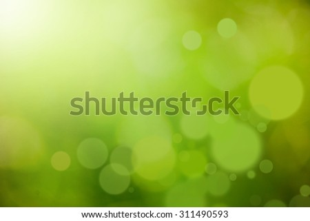 Green abstract blur nature background with sun rays