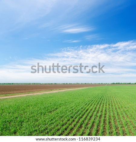 green and black field under cloudy sky - stock photo