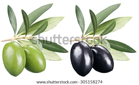 Green and black olives with leaves on a white background. File contains clipping paths. - stock photo