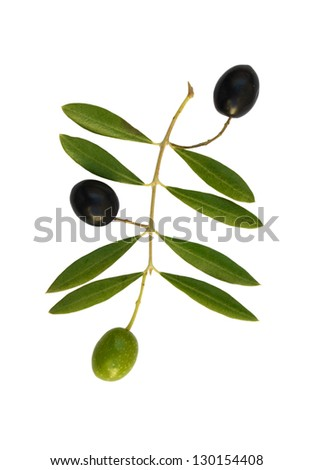 Green and black olives with olive leaves isolated on white