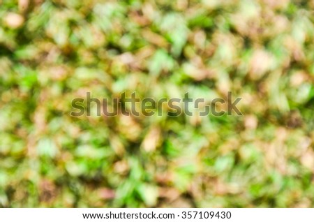Green and brown natural blur short grass outdoor material texture background