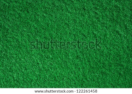 Green and fresh grass background with soft highlights