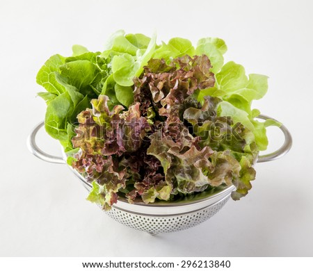 green and red lettuce isolated in basket on white background - stock photo