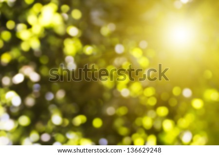 Green and yellow lights background. Defocused texture. Summer sun.