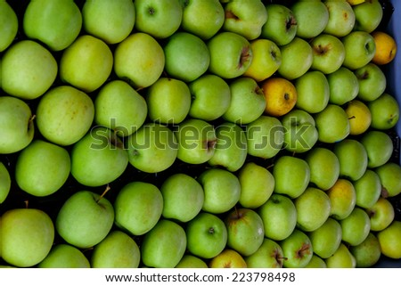 green apple group from marketplace