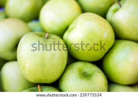 Green Apple, Malus domestica Borkh, many Apple - stock photo
