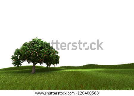 Green apple tree full of red apples  in meadow isolated over white - stock photo
