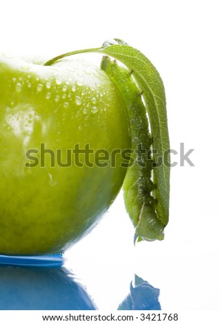Green apple with worm