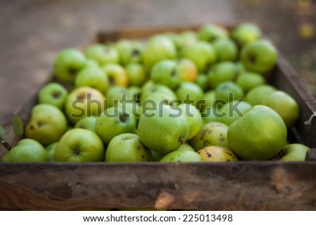 Green apples in a wood box
