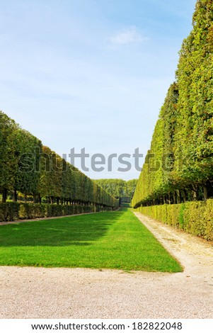 Green archway in a garden. Beautiful Versailles  , France - stock photo