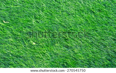green artificial grass lawn background - stock photo
